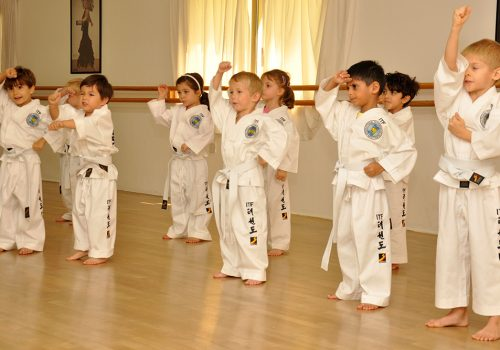 optimized-Taekwondo-kids-pic
